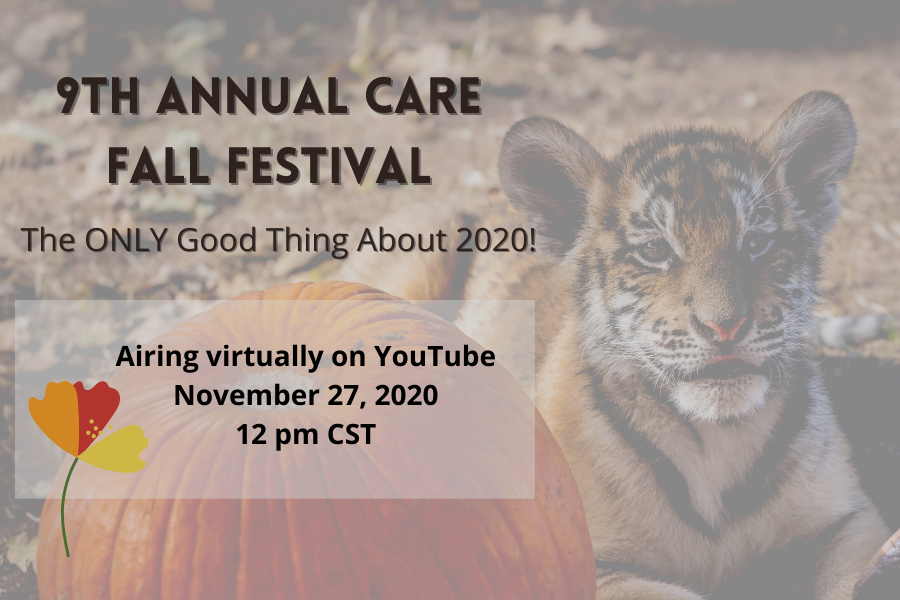 CARE 2020 Fall Festival