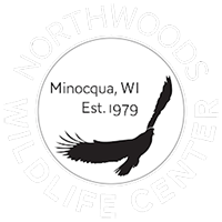 Northwoods Wildlife Center