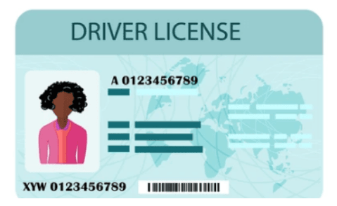 New in Town and Want to Drive? Here Are Some Tips on Driver's Licenses