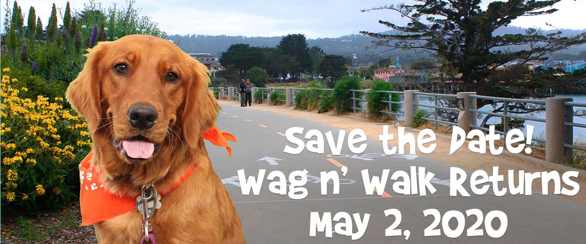 SPCA Wag n' Walk