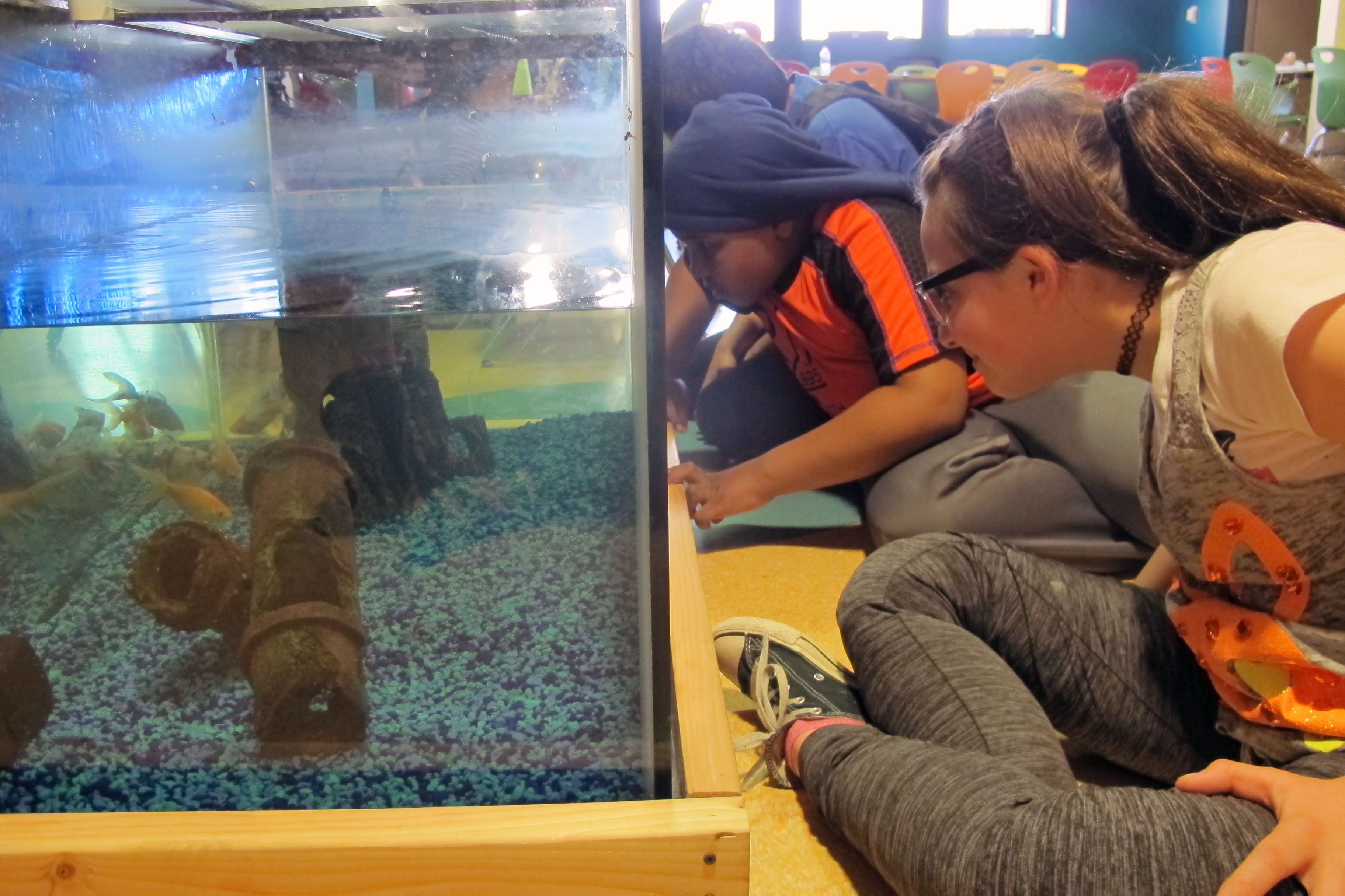 Completely KIDS : News & Events : Articles : Fish and Food
