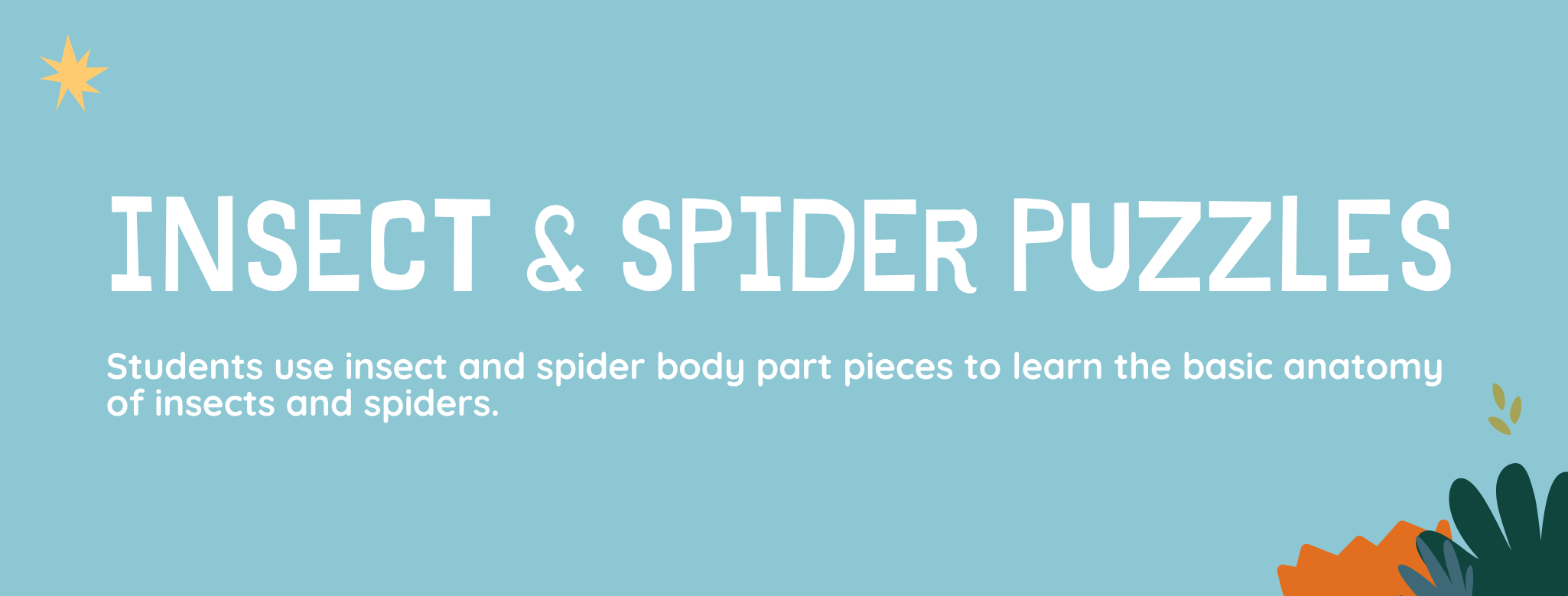 Insect & Spider Puzzles