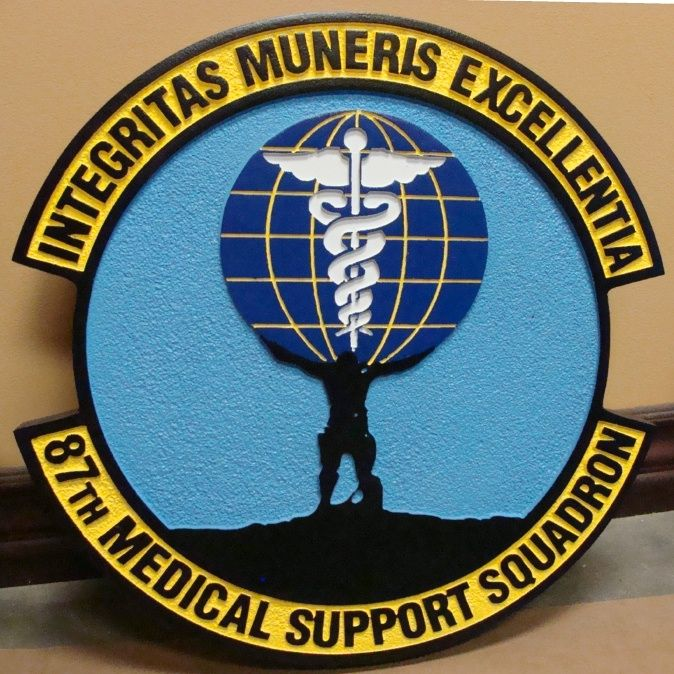 V31565 - Wall Plaque of the Crest for the 87th Medical Support Squadron of the USAF