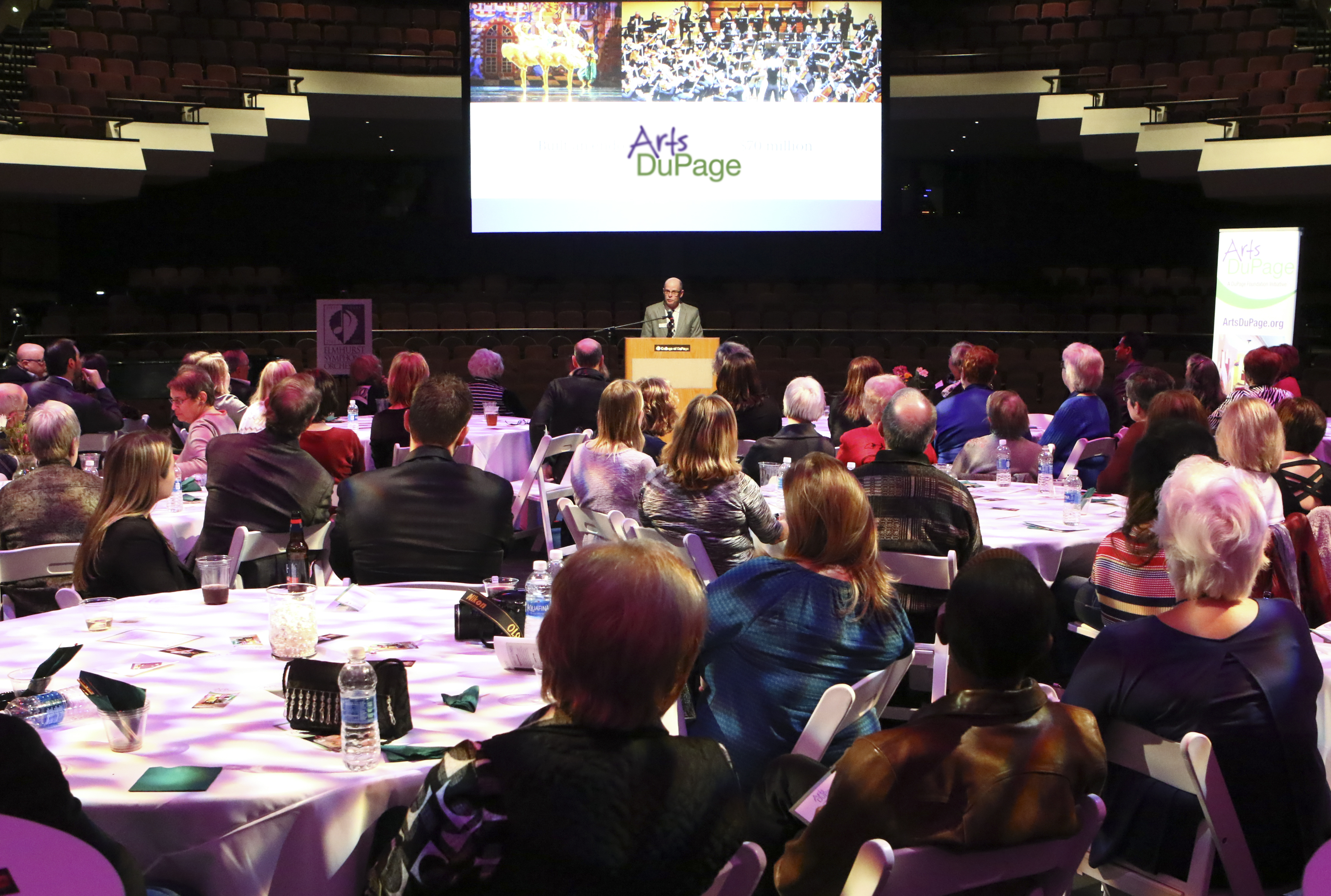 DuPage Foundation Celebrates Launch of New Arts DuPage Online Resource