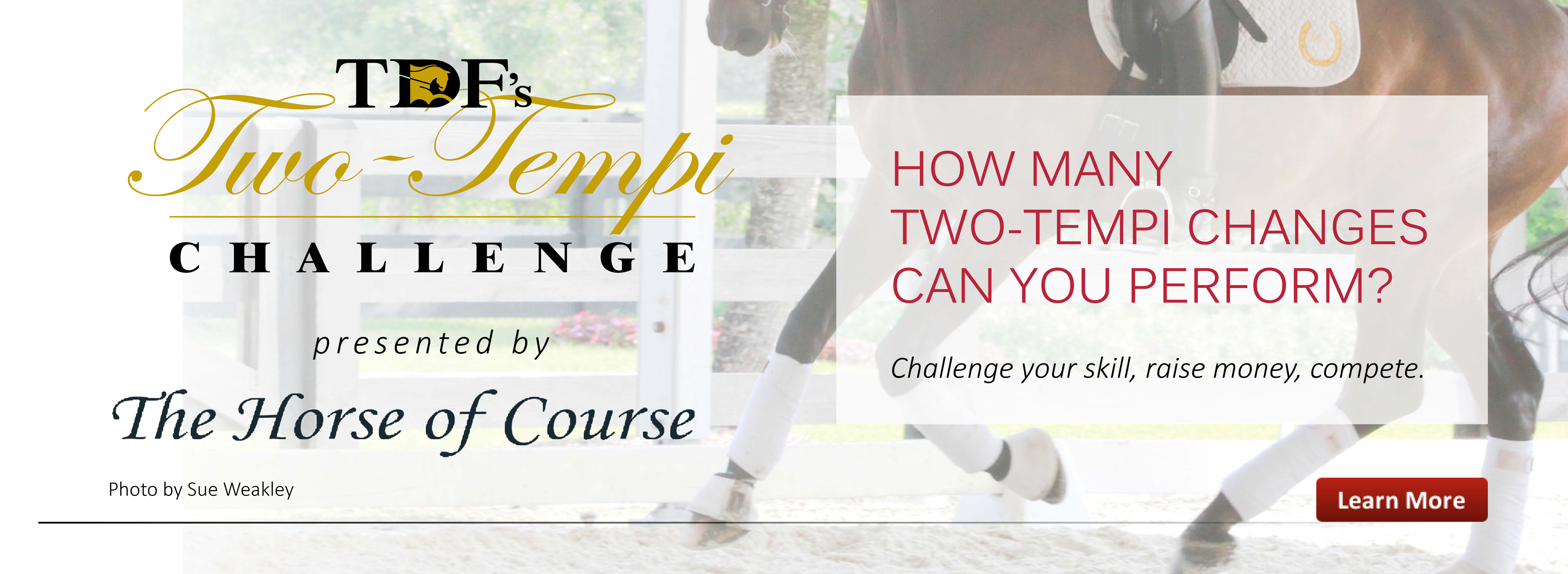 Two-Tempi Challenge