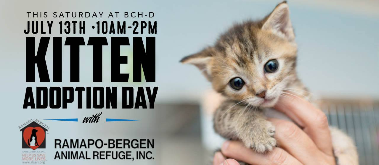 Bergen County Harley-Davidson Kitten Adoption Event!