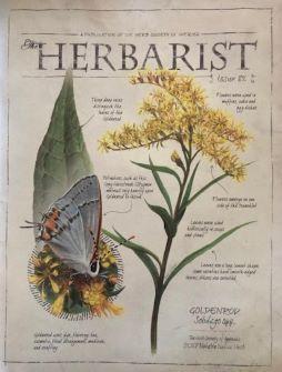 The Herbarist 2017