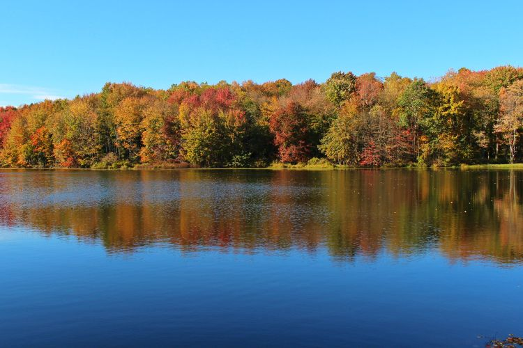 Upper Lake Fall