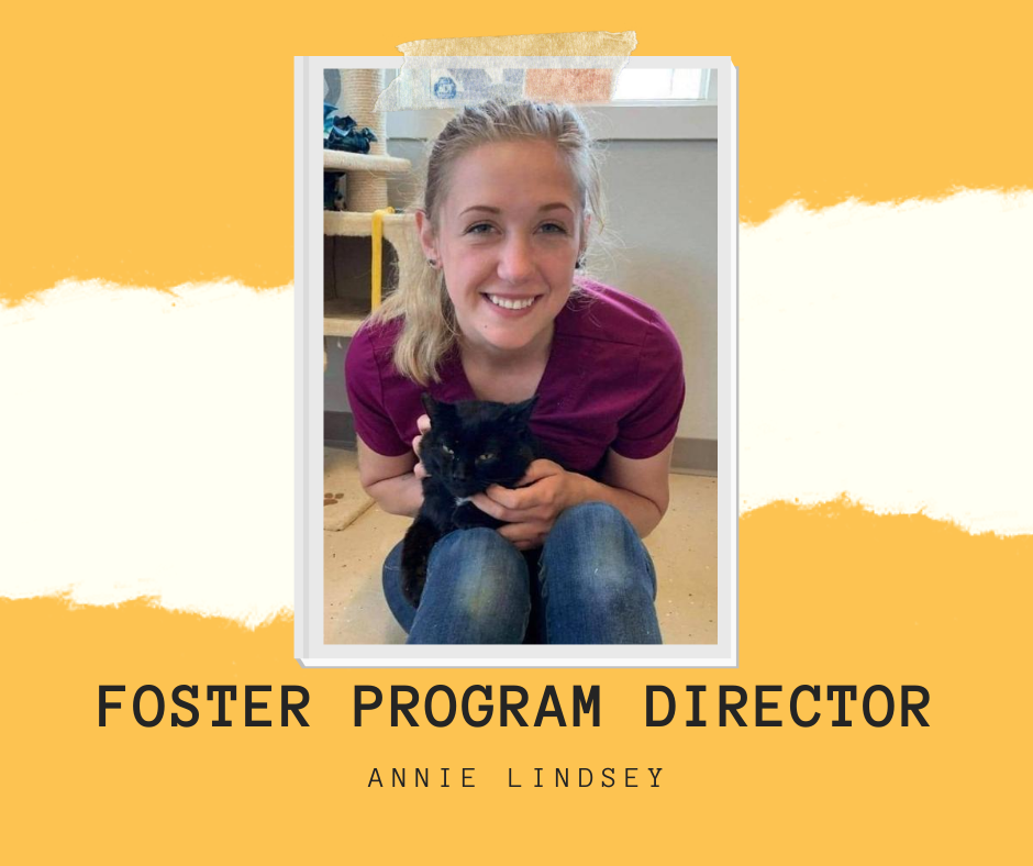 Foster Program Director