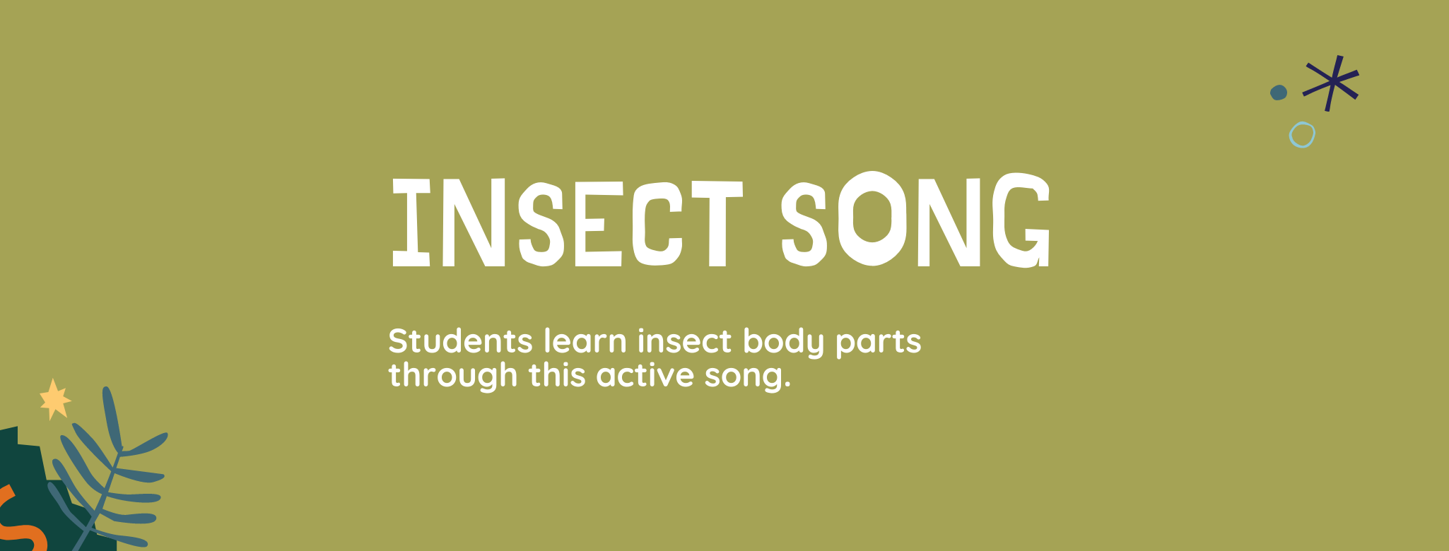 Insect Song