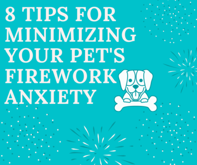 8 Tips for Minimizing Your Pet's Firework Anxiety
