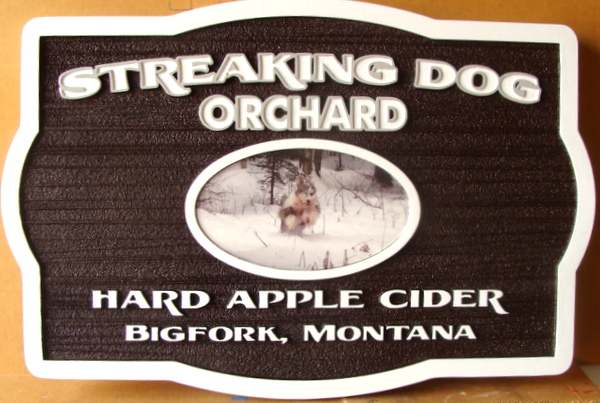 "024504 – Carved Property Sign for ""Streaking Dog Orchard"", with Photo of Dog in Snow"