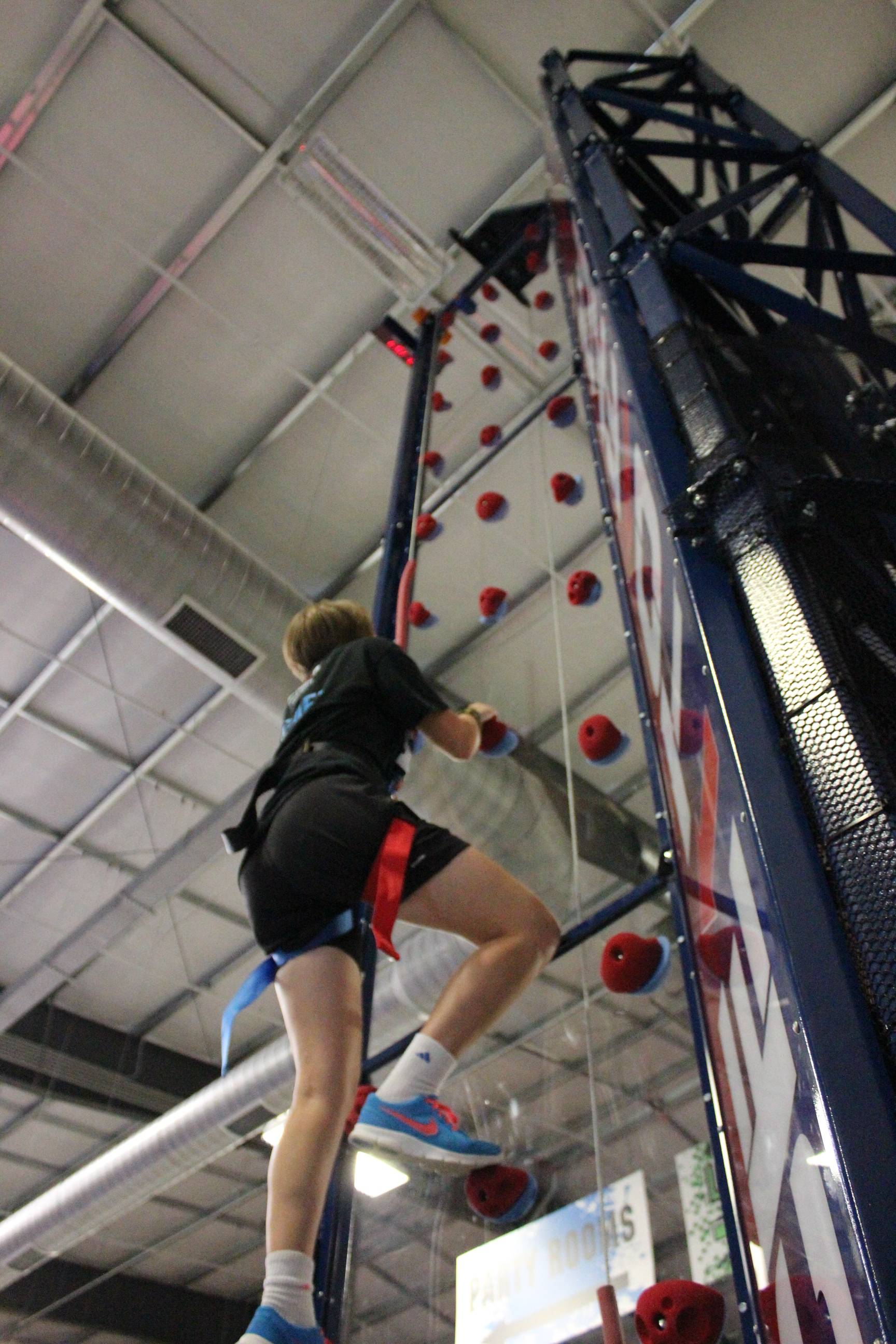 Duel Climbing Wall