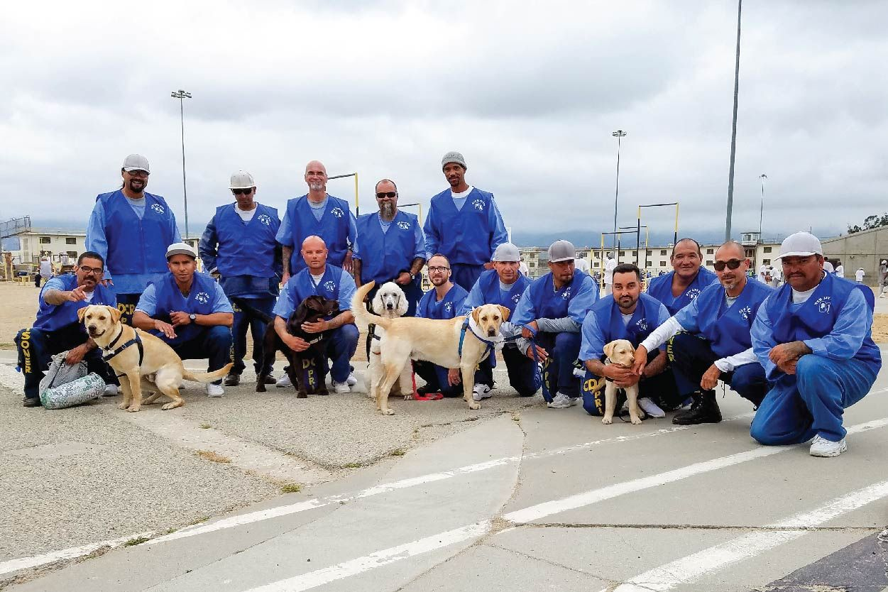 View Dogs at the Correctional Training Facility in Soledad