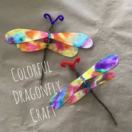 Colorful Dragonfly Craft