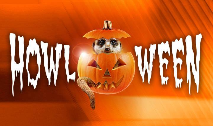ASNN's First Annual Howl-O-Ween Costume Contest!!!