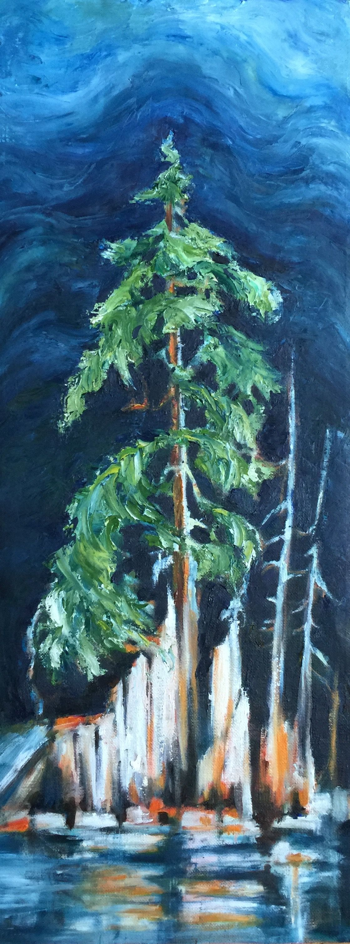 "Marilyn Lee - "" Western Hemlock, Tatoosh"""