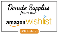 Shop Amazon without leaving your home.