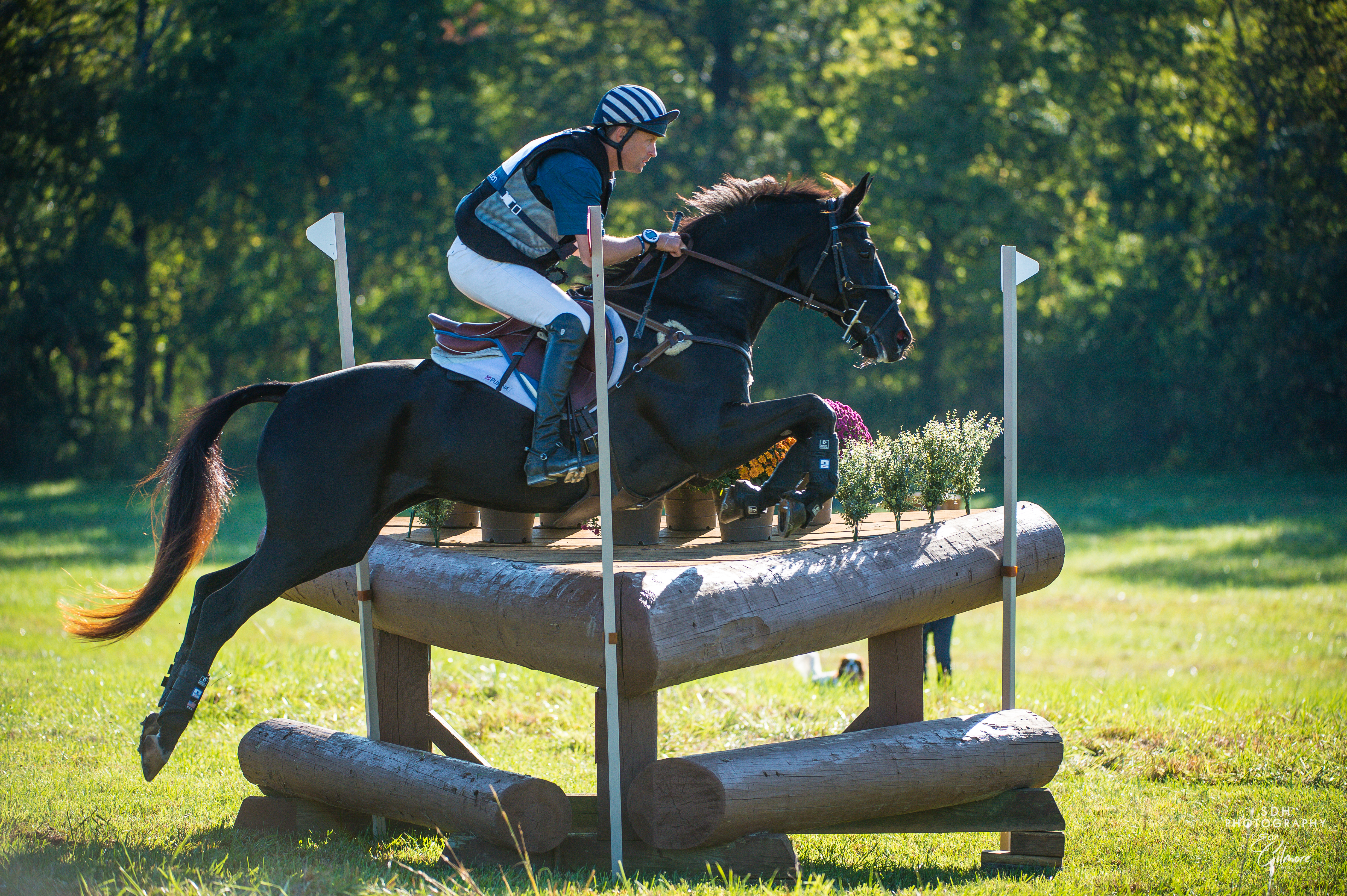 Your $50 donation helps purchase the paint and stain needed to maintain the many cross-country jumps at Morven Park.