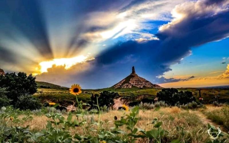 Prairie.