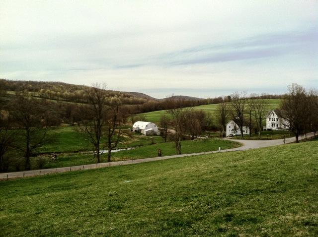 LINKED! - Bovina - ~500 acres - Lease