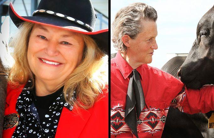 MCH Announces 2021 Recipients for Equine Icon and Lifetime Achievement Awards