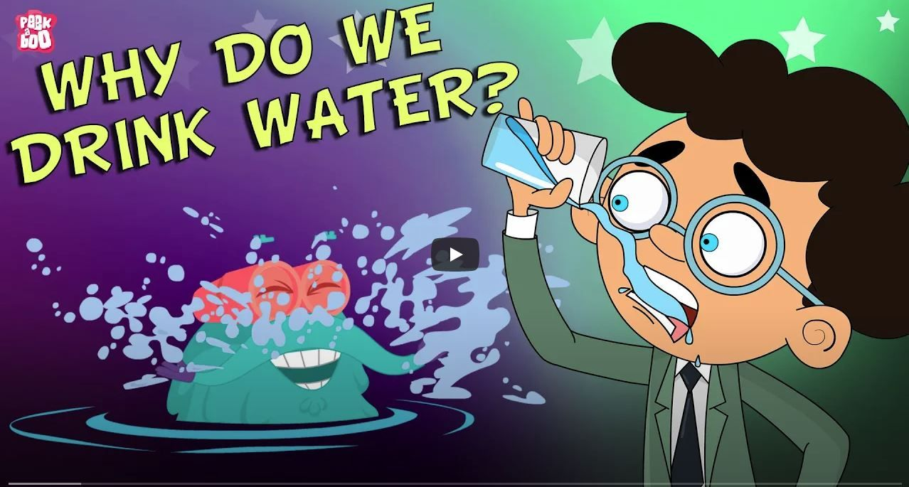 Why Do We Drink Water