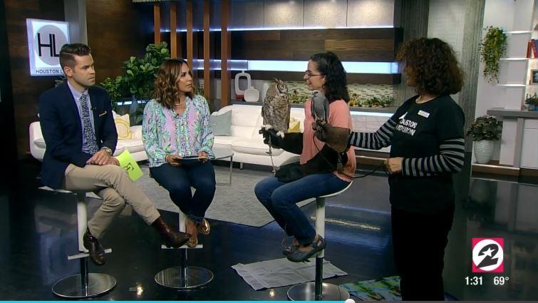 Houston Life TV Interview
