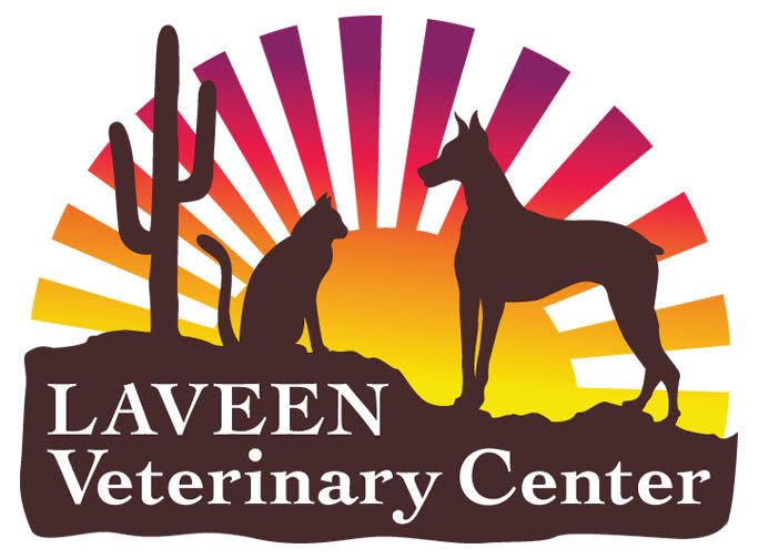 Laveen Veterinary Center