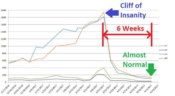FRED'S CLIFF OF INSANITY: A HOPEFUL PICTURE OF THE UNPREDICTABLE LIFE OF A PSCER