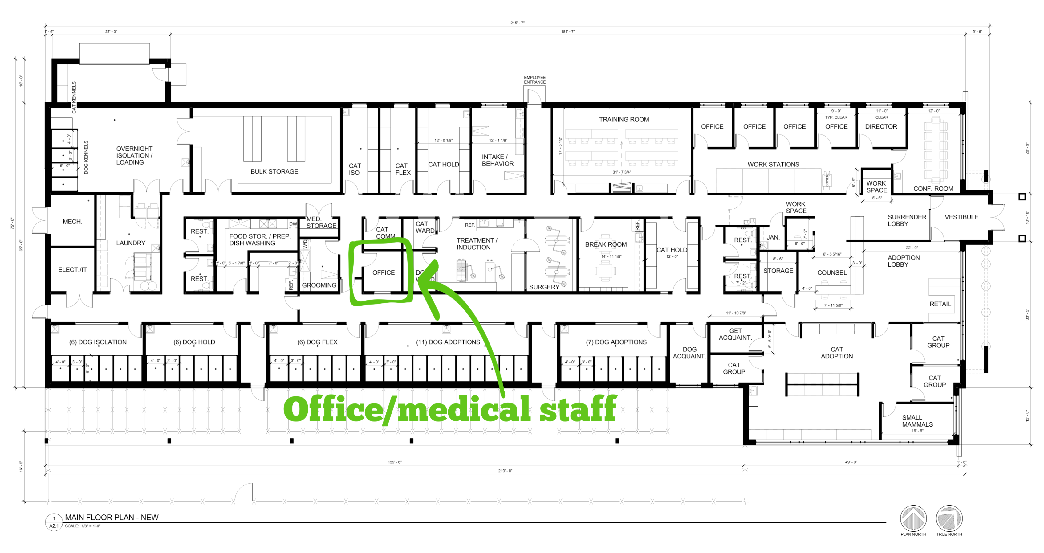 Office/Medical Staff