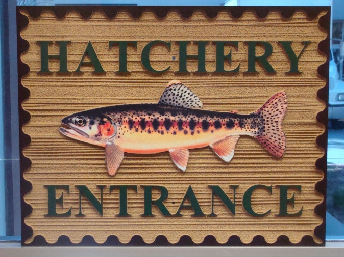M22568 - Fish Hatchery Sign with Mounted Trout