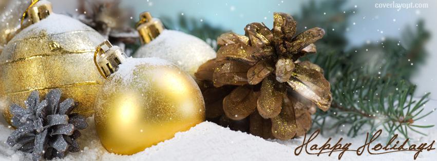 Happy Holidays pice cones