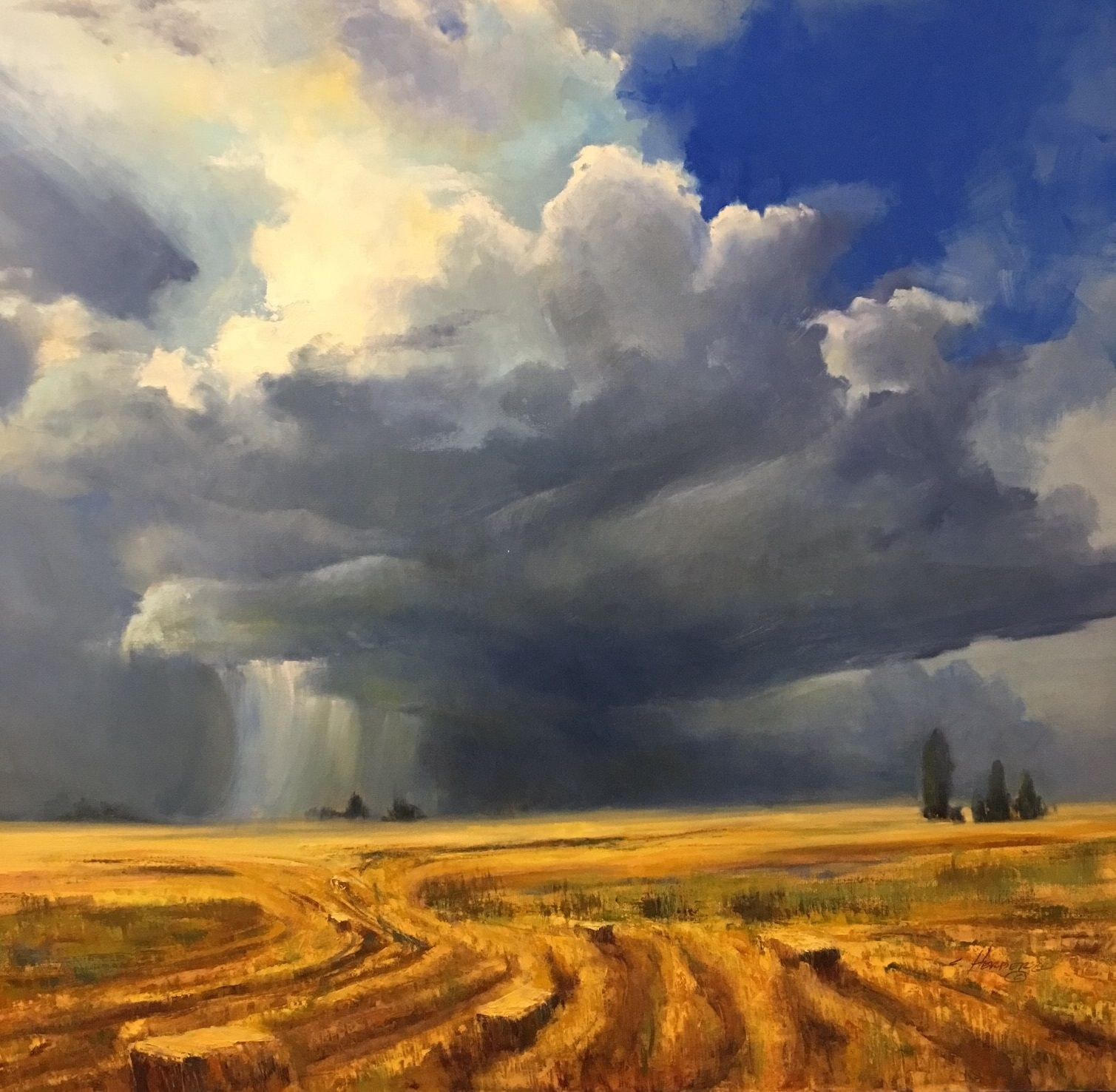 Wild Montana Skies, Solo Exhibition by Connie Herberg