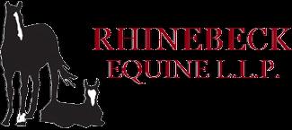 Rhinebeck Equine