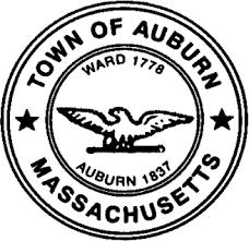 Auburn Town Cleanup