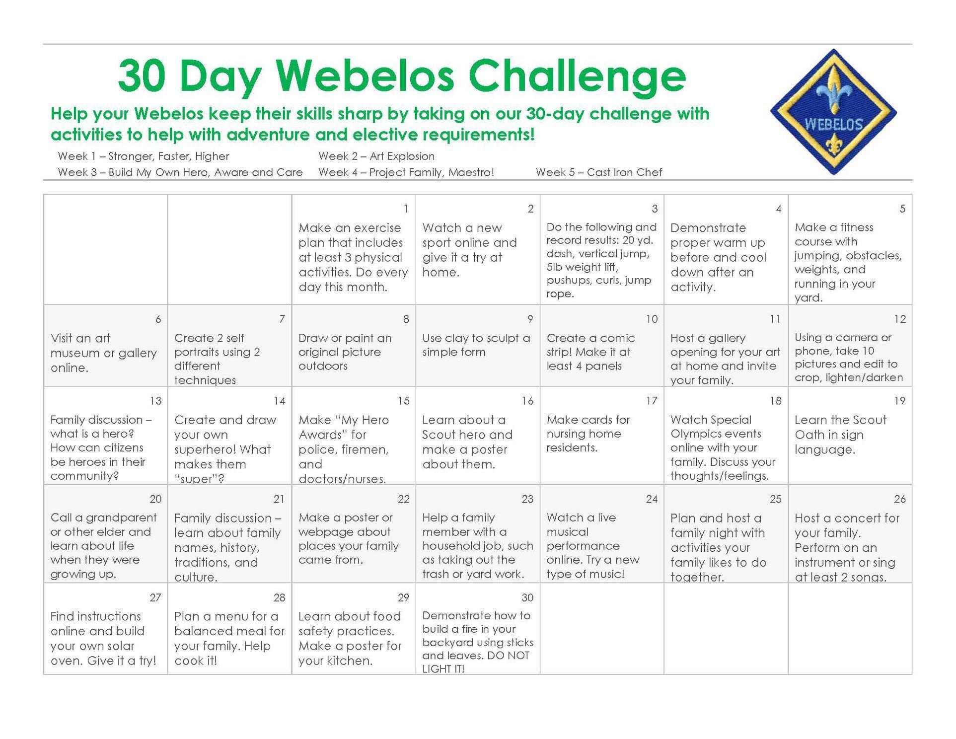Webelos (4th & 5th Grade)