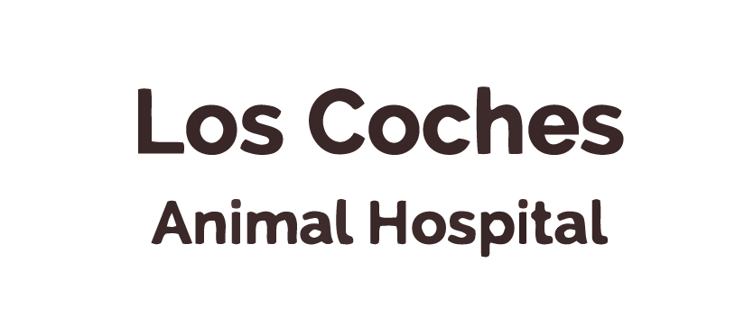 Thank you to Los Coches Animal Hospital