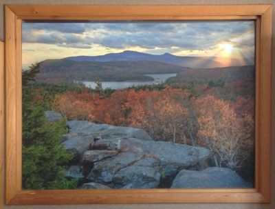 Photo enlargement mounted onto Coroplast for window covering