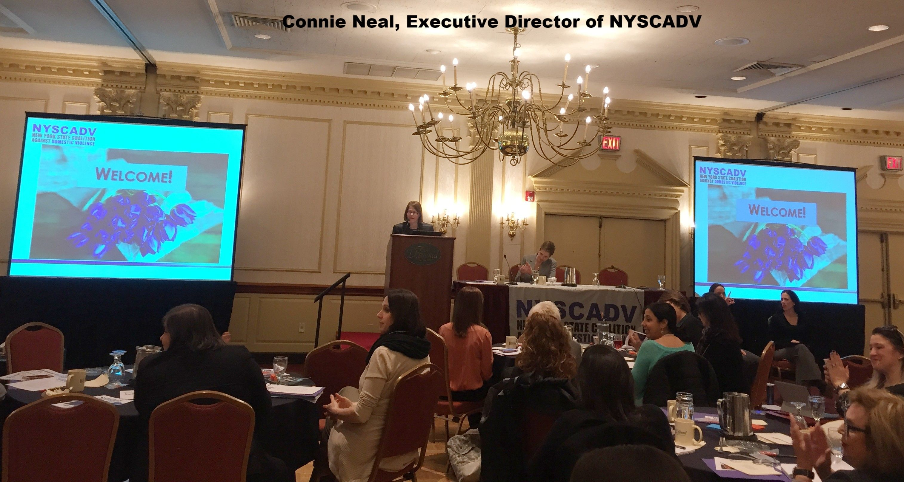 Recap of the 2018 NYSCADV Annual Membership Meeting