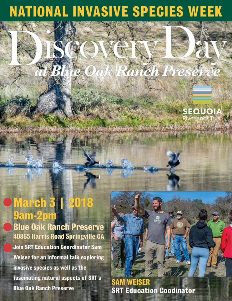 Invasive Species at Blue Oak Ranch Preserve Mar. 3!