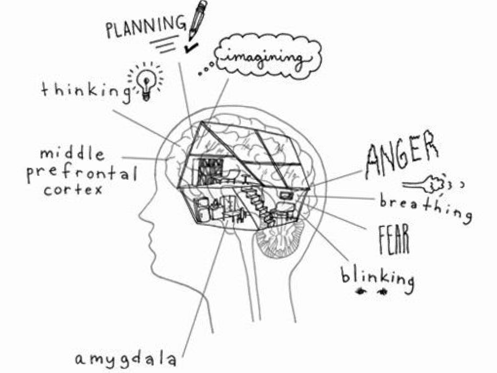 Managing Anxiety