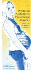 Perinatal Addictions Prevention Project Brochure