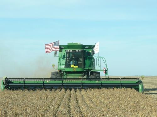 Lien Harvest