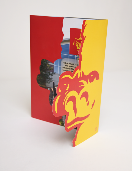 Brochures | Full Color | 2-Sided
