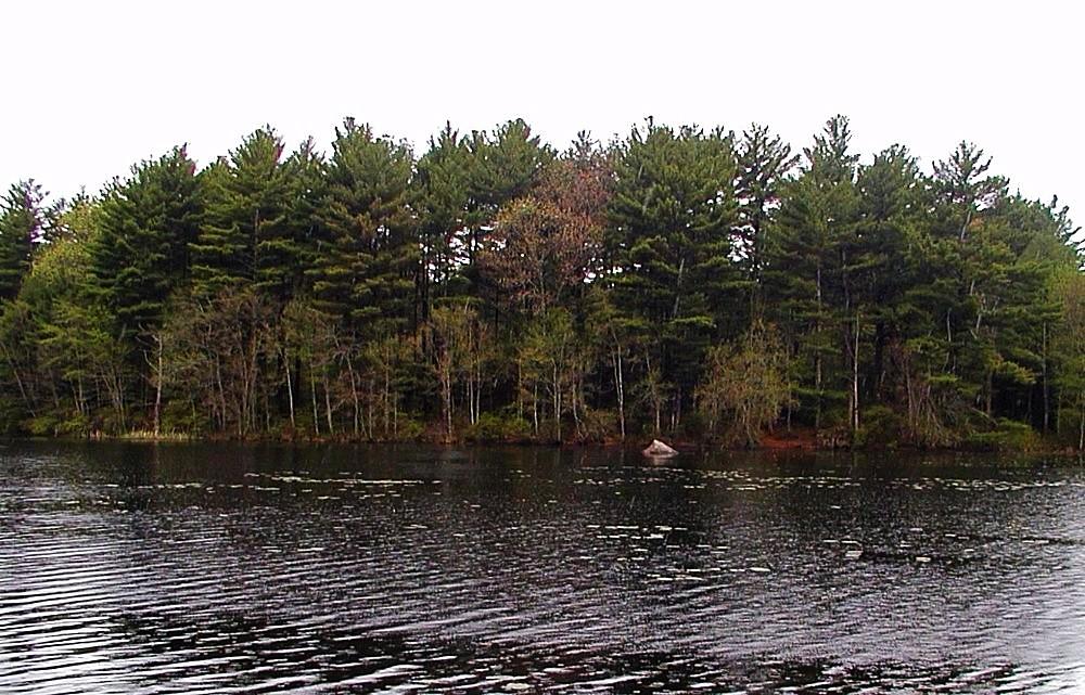 Waterman Pond Wildlife Refuge Coventry Audubon Society of Rhode Island Birds Birdwatching Hiking Nature Environment
