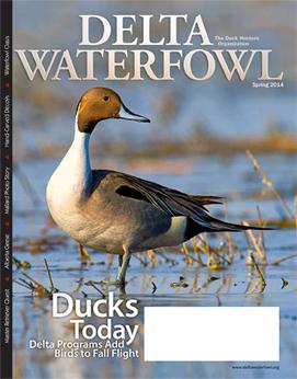 Delta Waterfowl Magazine Features Ducks Today