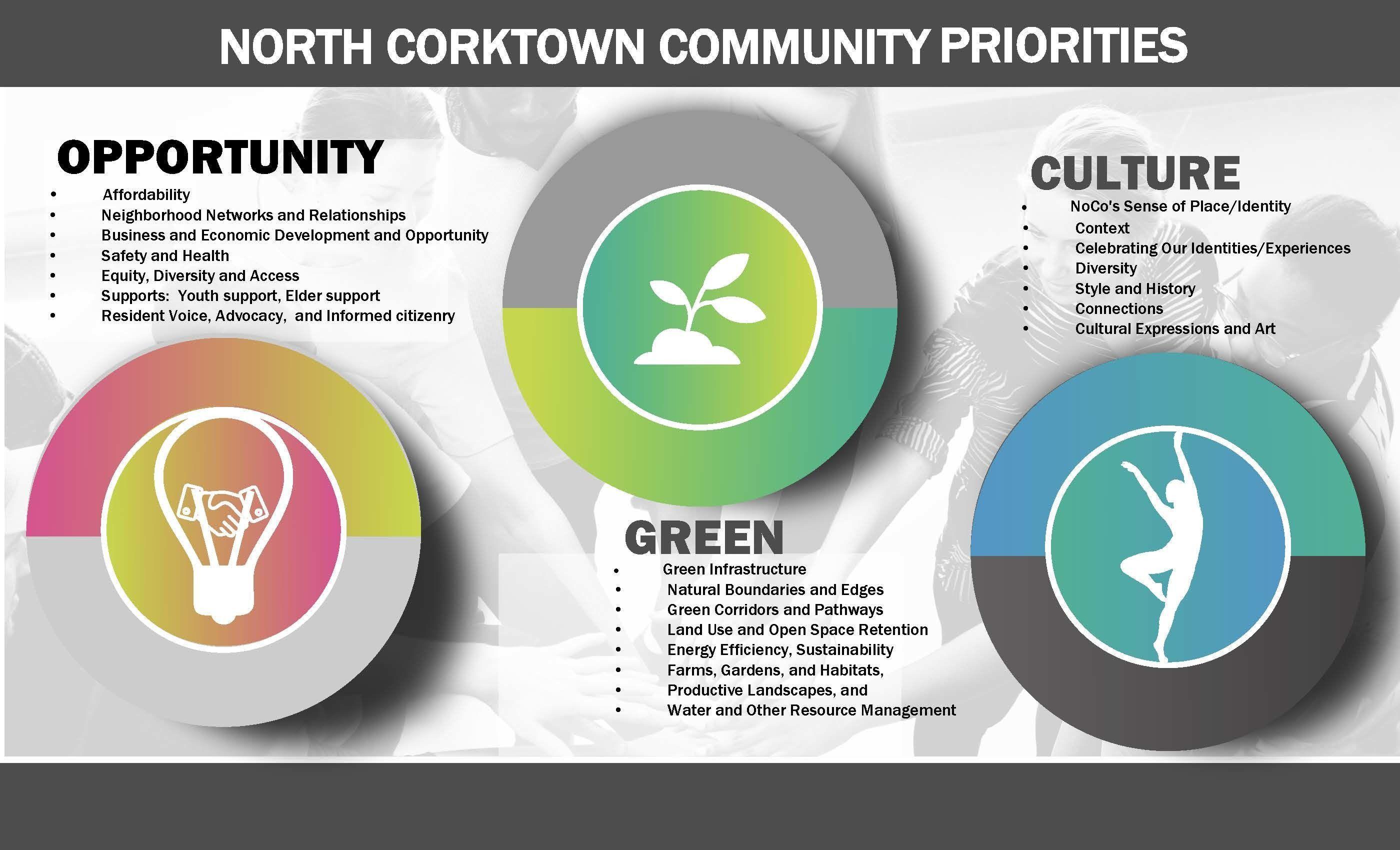 NoCo Guiding Principles/Priorities for Redevelopment