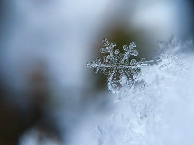 Day of Contemplation & Prayer For Those Who Struggle During the Holiday Season - Dec. 15