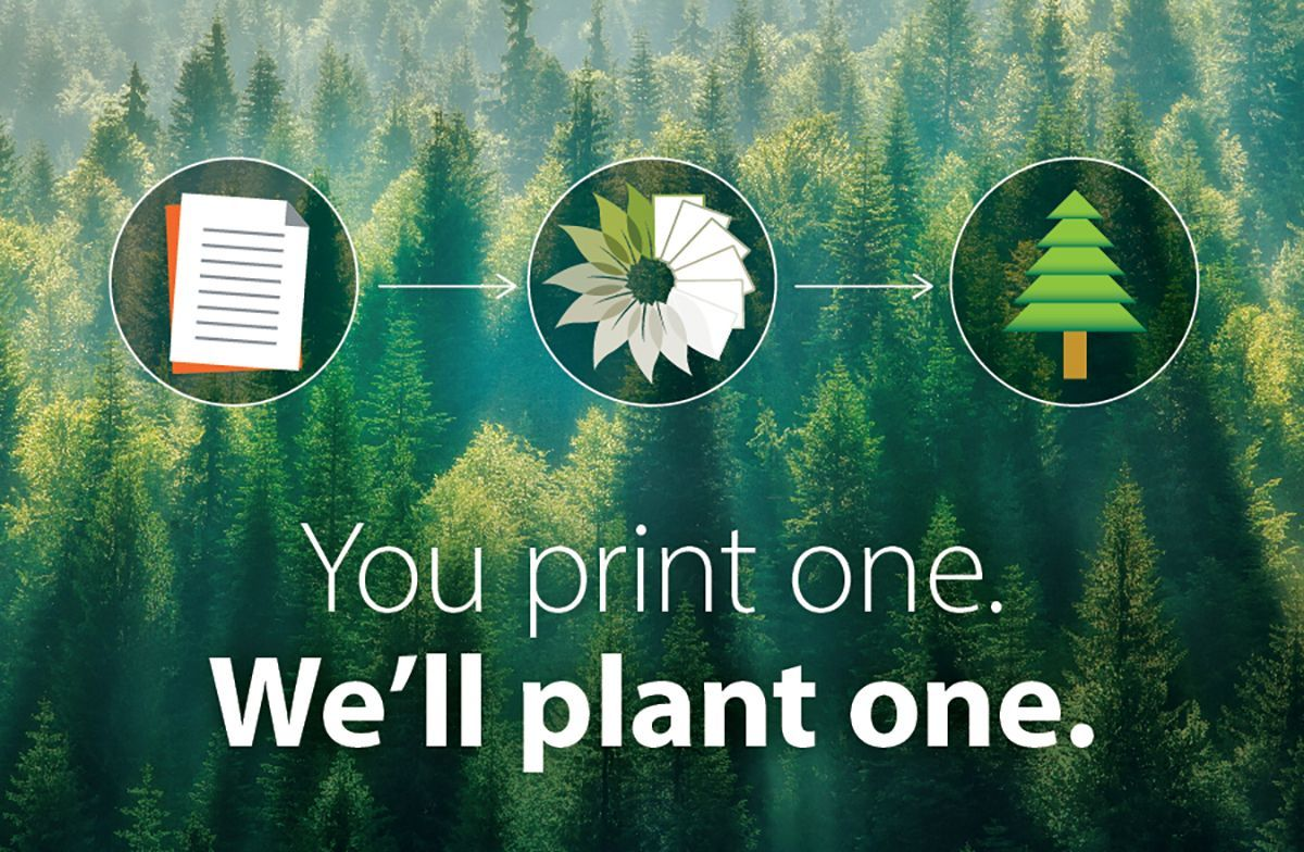 You print one. We'll plant one.